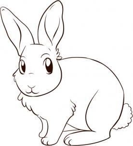 Como desenhar um coelho muito f cil aprender a desenhar for How to draw flo