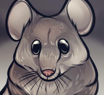 como desenhar um rato