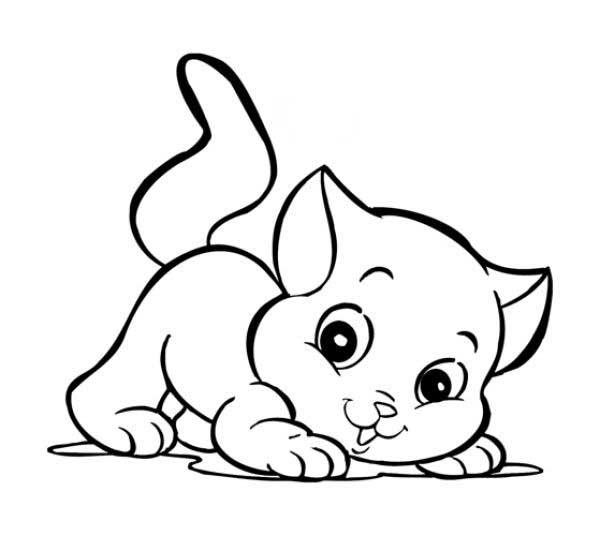 Gato Para Colorir E Imprimir Muito Fácil Colorir E Pintar