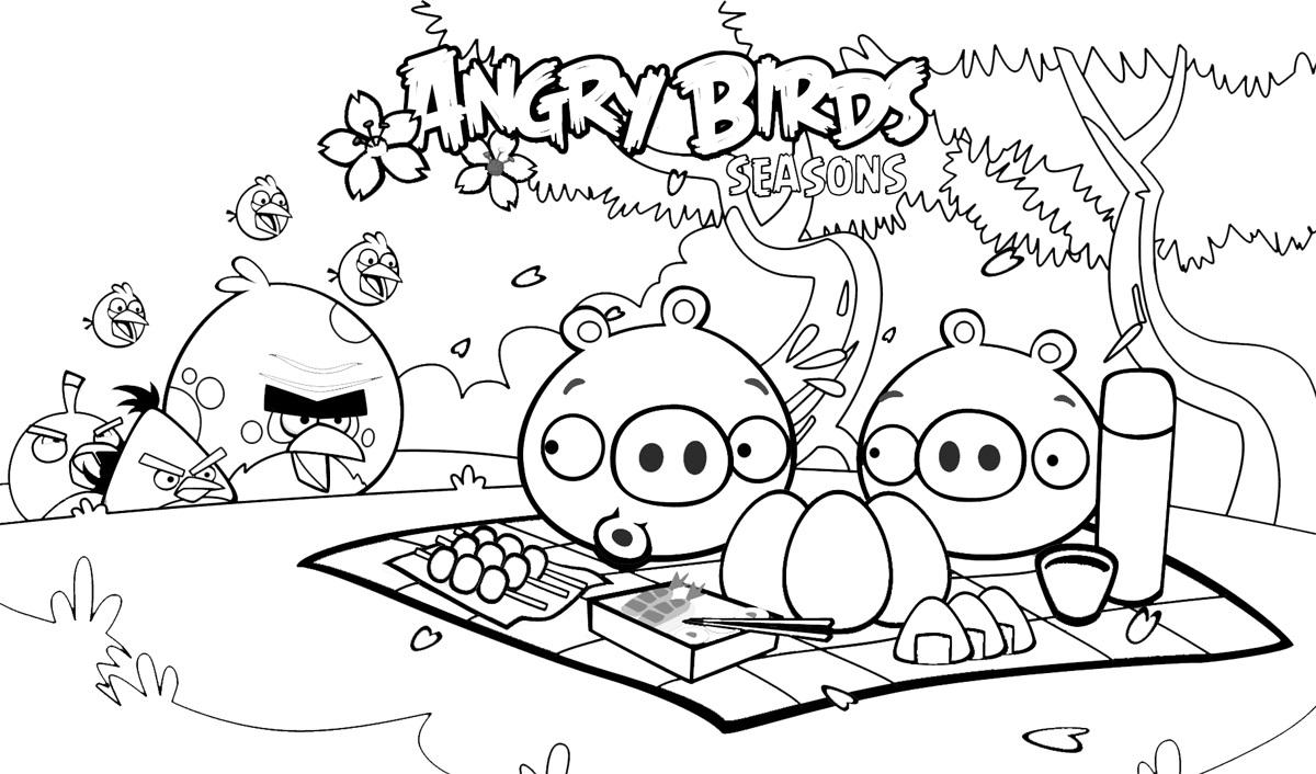 Desenho Angry Birds Menina Para Colorir: Angry Birds Para Colorir E Imprimir