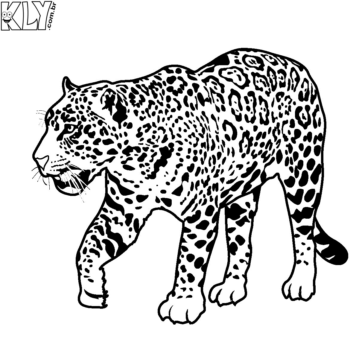 On a para colorir e imprimir muito f cil colorir e pintar - Jaguar dessin ...