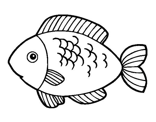 Peixe Para Colorir E Imprimir Muito F 225 Cil Colorir E Pintar