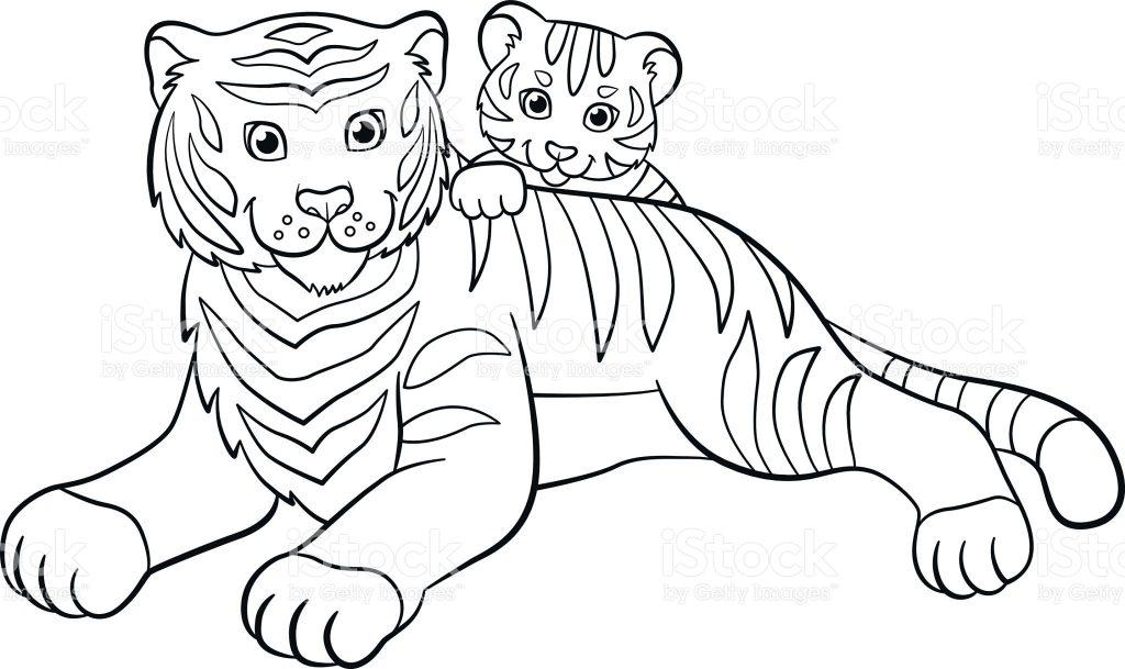 Desenhos De Animais Para Colorir Colorir: Tigre Para Colorir E Imprimir