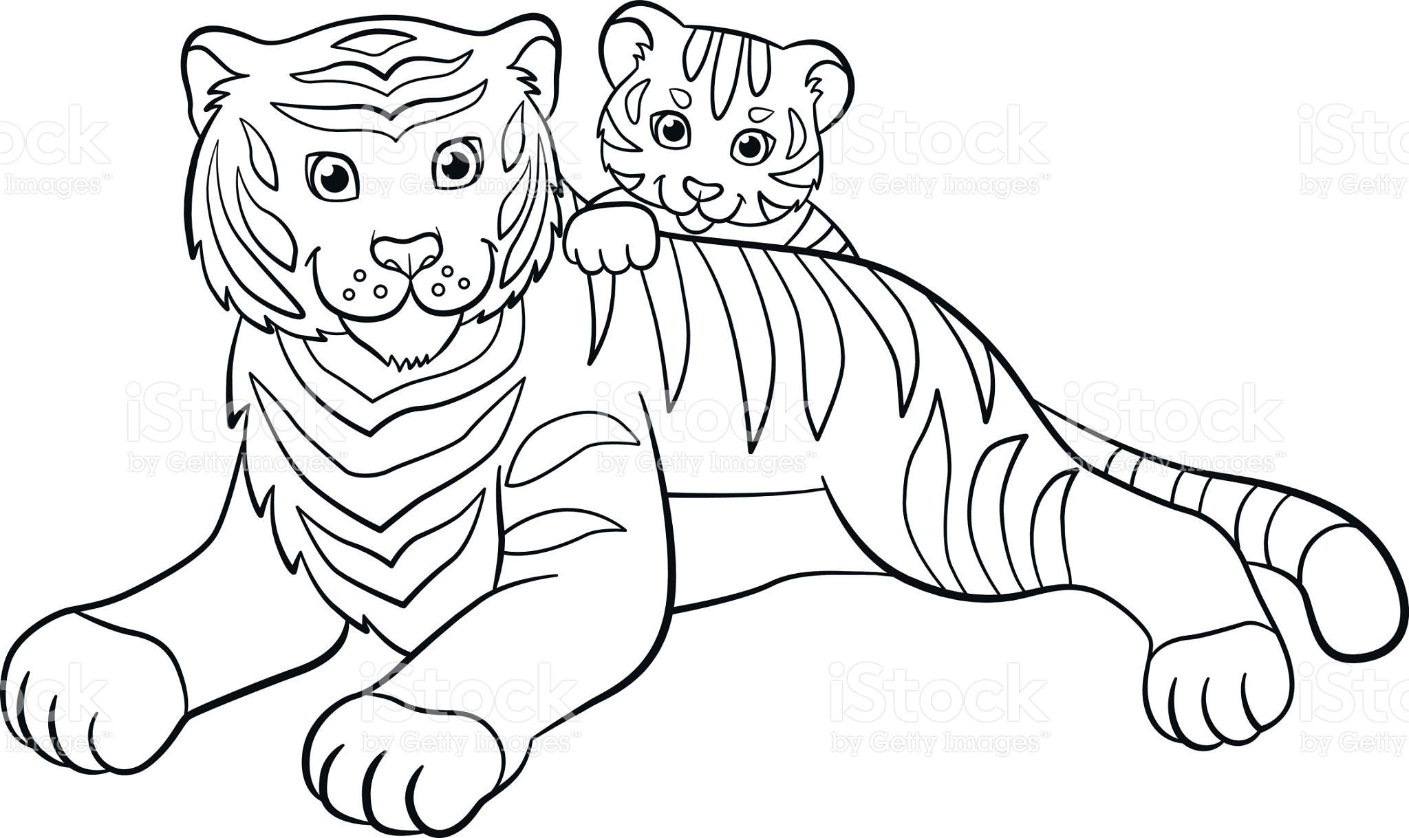 tigre-para-colorir-e-pintar-15.jpg