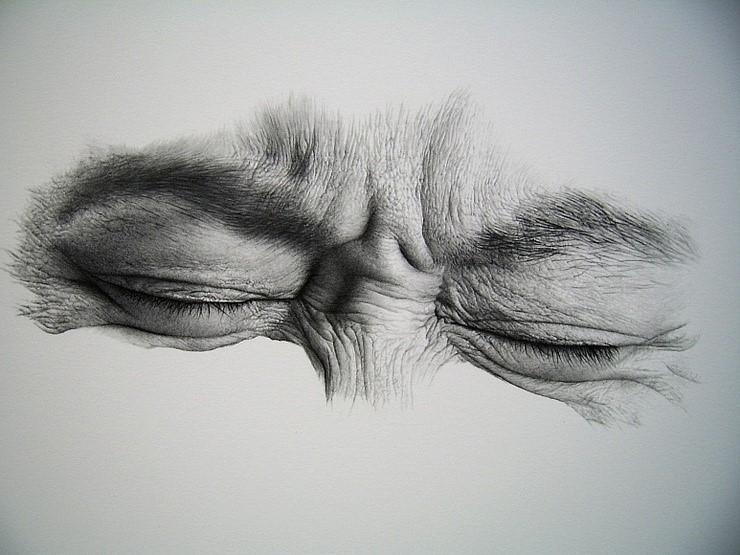 Tecnicas De Desenho Com Lapis Aprender A Desenhar