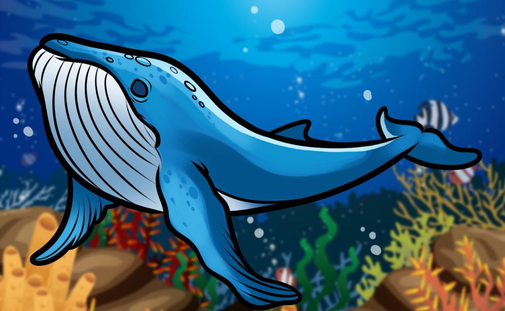 como desenhar uma baleia