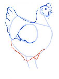 como desenhar uma galinha