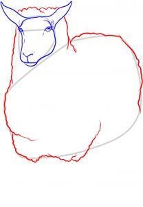 como desenhar uma ovelha