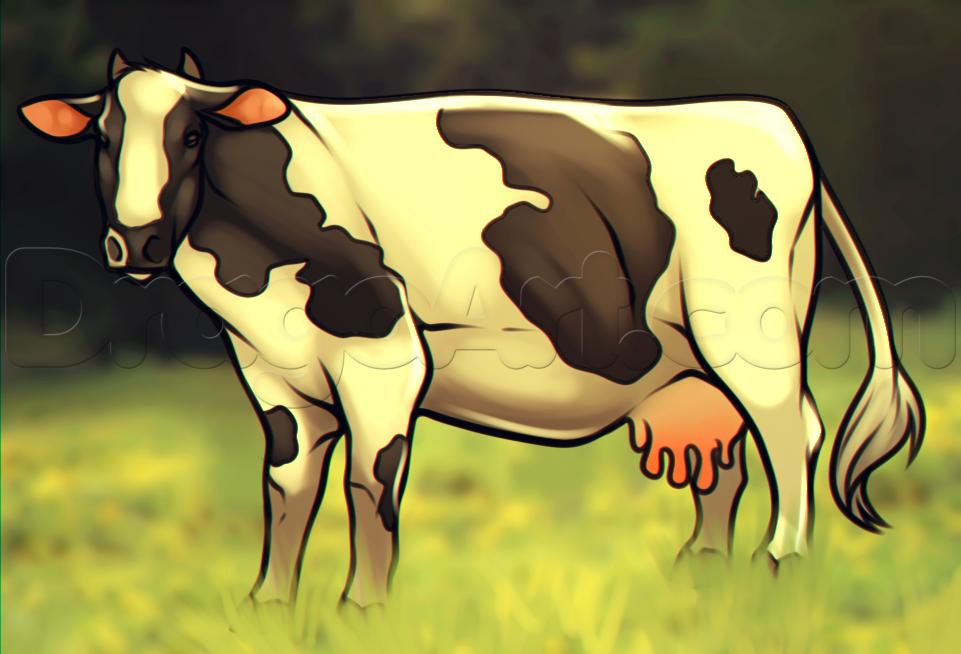 como desenhar uma vaca