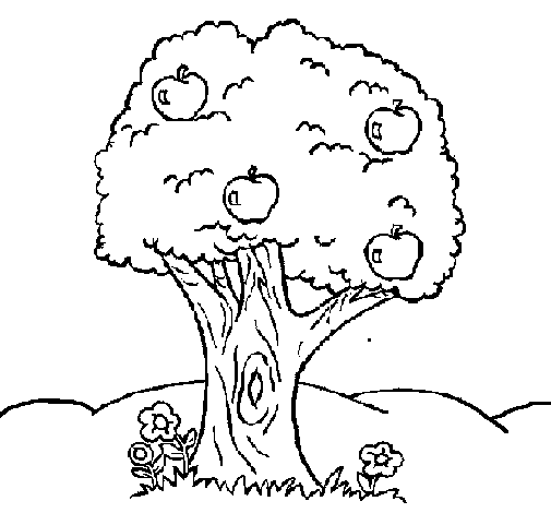 árvore para colorir e pintar
