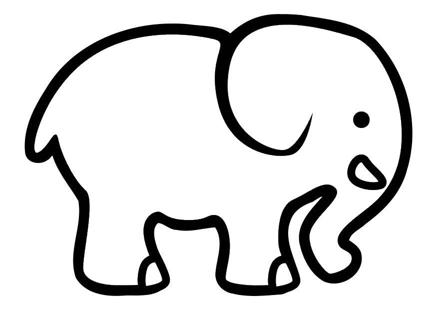 elefante para colorir e pintar
