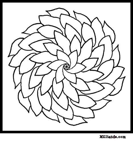 flores para colorir e pintar