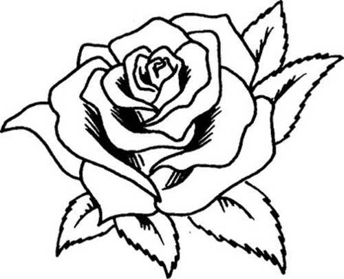 Flores Para Colorir E Imprimir Muito Facil Colorir E Pintar
