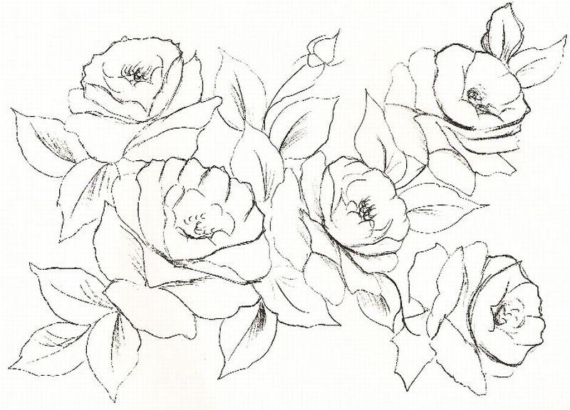 Desenhos de Rosas para Colorir pintura em tecido 2