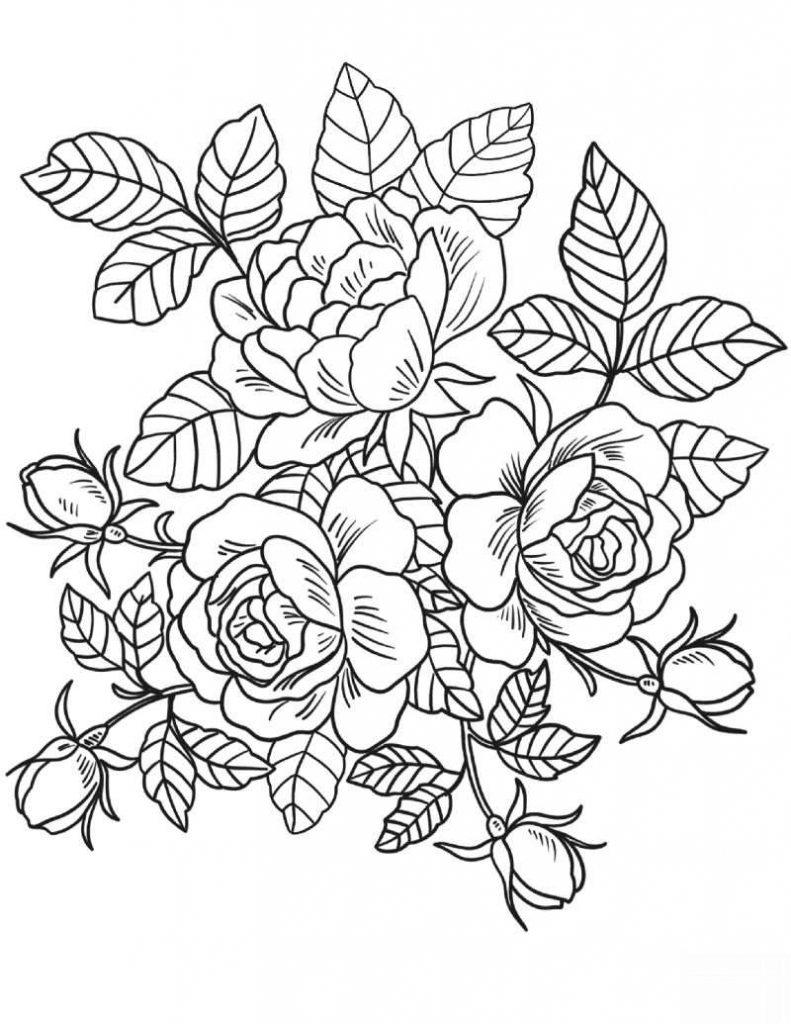 Desenhos de Rosas para Colorir rosas arranjo