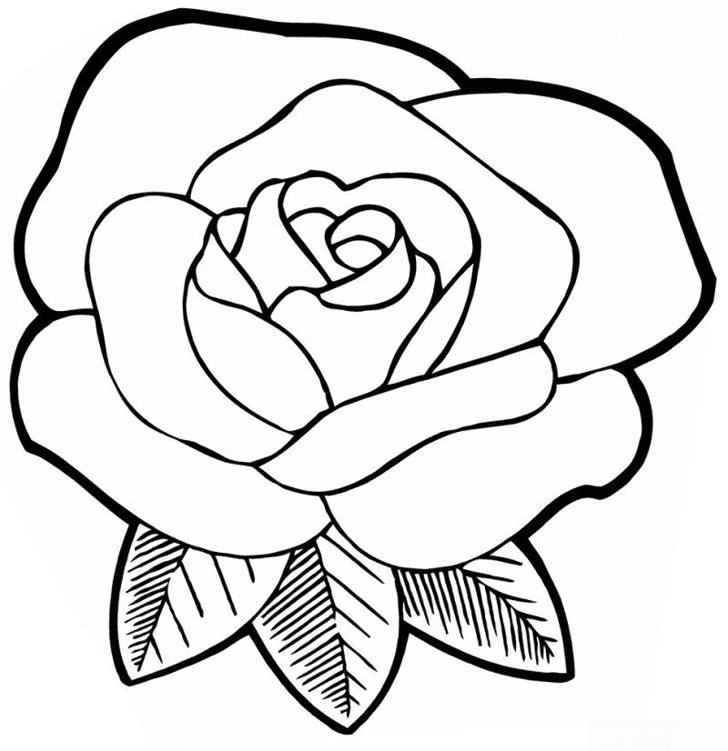 Desenhos de Rosas para Colorir simples