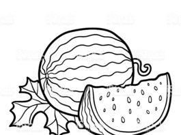 Arquivos Frutas Aprender A Desenhar