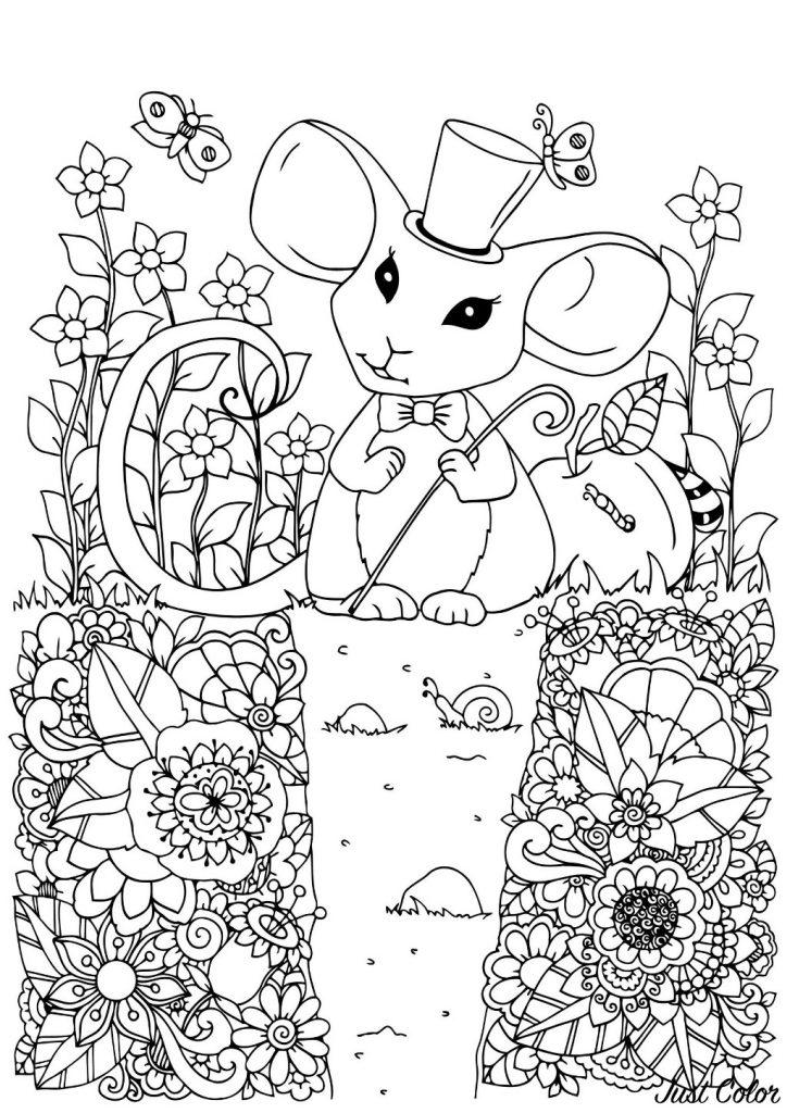 rato para colorir pintar