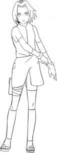 como desenhar a sakura tutorial