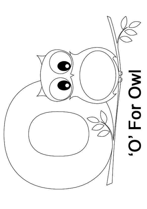 vogal o para colorir owl