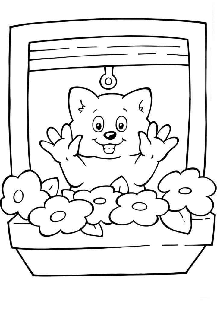 janela para colorir gato