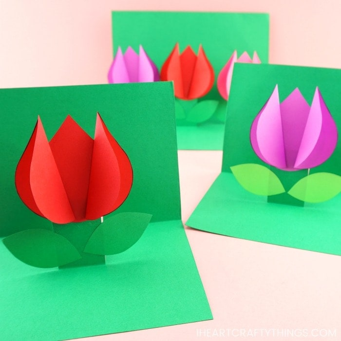 cartão de flor tulipa