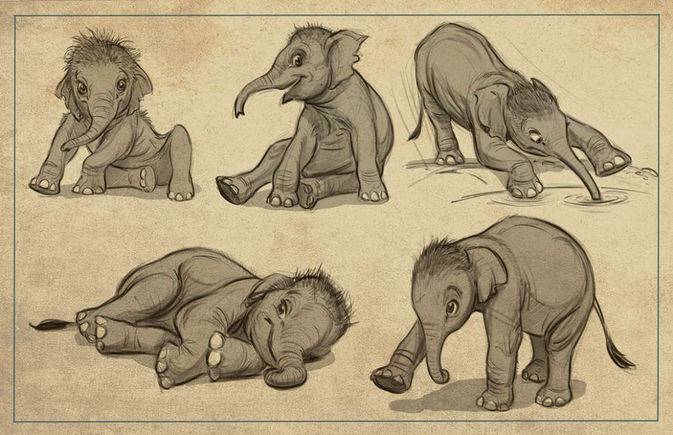 como desenhar animais facil