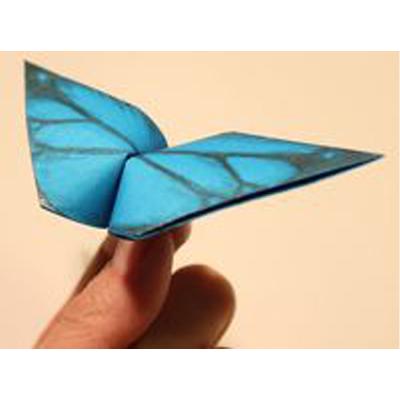dobradura de borboleta