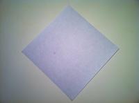 dobradura flor de iris papel