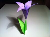 dobradura flor de iris