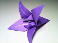 origami flor de iris pronto