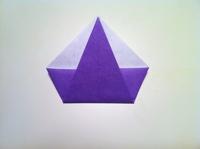 origami flor de iris quadrado