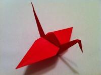 origami pássaro tsuru